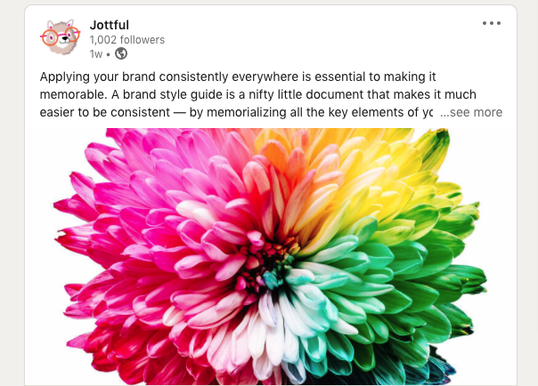 brand on social media posts